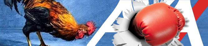 Francia: doppio ko per AXA